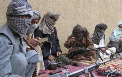 در حمله هوایی ارتش ملی ۸ طالب به شمول یک فرمانده محلی آنان کشته شدهاند