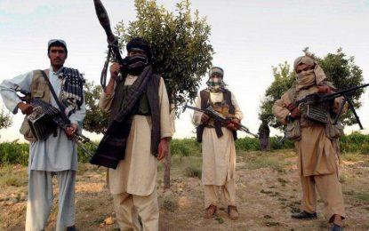 تلفات سنگین طالبان در فراه، ۱۳ عضو این گروه کشته شده اند