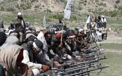 طالبان آتشبس اعلام شدهشان را نقض کردهاند