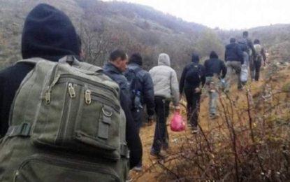 ۷۷ قاچاقبر در سال گذشته در کشور محاکمه شدهاند
