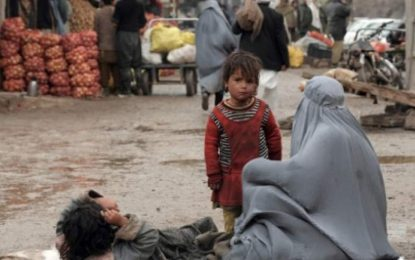 سمینار علمی تحقیقی برای کاهش تکدیگری در کابل برگزار شد
