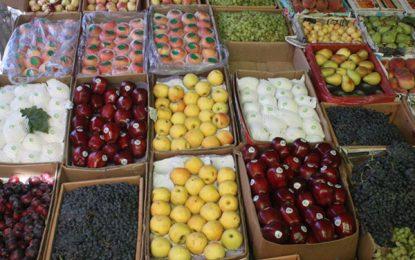 افزایش ۳۲ درصدی صادرات میوه تازه کشور