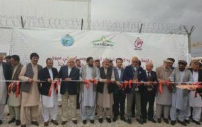 بزرگترین کارخانه تولید آب انگور و کشمش در ولایت پروان افتتاح شد