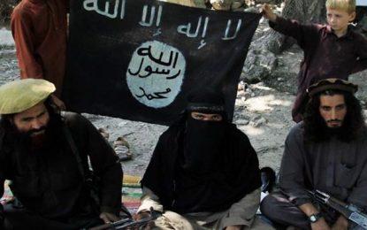 قول اردوی سیلاب: ۴ داعشی در اثر ماین دستساز خودشان کشته شدند