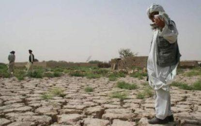 اداره ملی محیط زیست: حکومت برای پیامدهای ناشی از تغیر اقلیم هیچ اقدام نکرده است