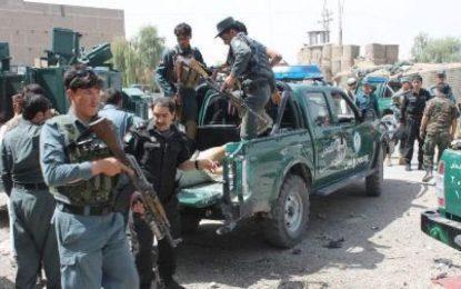 نیروهای امنیتی غزنی ۳۱ طالب را از پا در آوردهاند