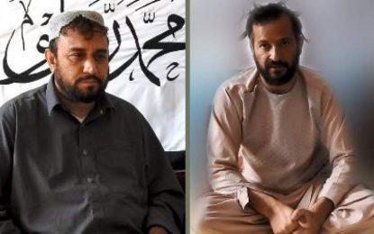 طالبان نمایندگان جعلی شان را در مذاکرات صلح بازداشت کردهاند