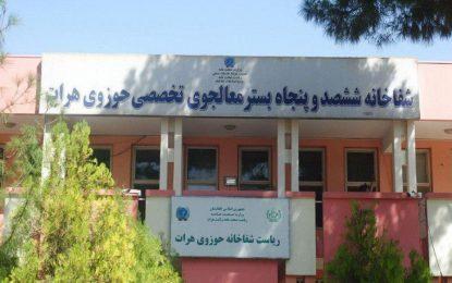 در جریان یک ماه گذشته ۲۰ نفر در هرات به دلیل گاز گرفتگی مسموم شده اند