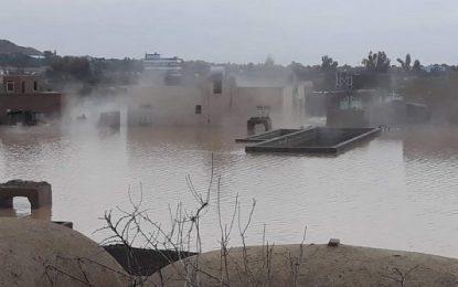 سیلاب در هلمند  منجر به مرگ ۶ نفر شد