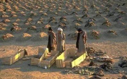 در سه روز نخست عملیات بهاری طالبان، حدود ۱۸۰ عضو این گروه در شمال کشور کشته شدهاند