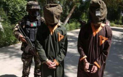 چهار عضو گروه تروریستی داعش در ننگرهار بازداشت شدند