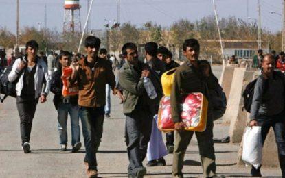 افزایش ۳۶ درصدی برگشت مهاجران به کشور