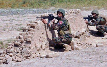 نیروهای خیزش مردمی، طالبان را در ۲۵ قریه ولایت غور شکست دادند