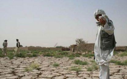 مردم ۲۰ ولایت کشور با خشک سالی دست و پنجه نرم می کنند