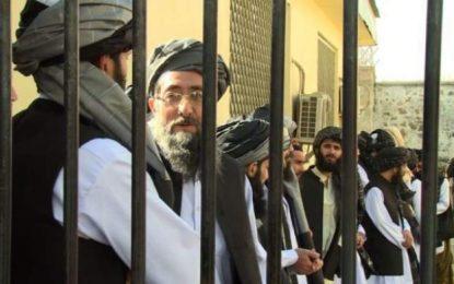 سیماسر: بیشتر افراد آزاد شده زیر نام  زندانیان حزب اسلامی، اعضای گروه طالباناند