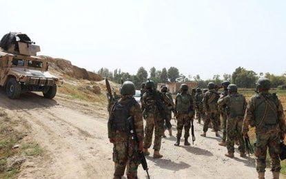وزارت دفاع: ۴۸ طالب مسلح در بادغیس کشته شده است