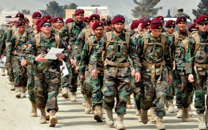 حدود ۳۰۰ تن از نیروهای اردوی منطقهای در قلاردوی ۲۰۷ ظفر، سند فراغت به دست آوردند