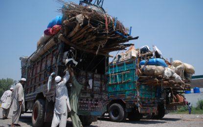 سردی هوا سبب توقف روند برگشت مهاجرین از پاکستان شده است