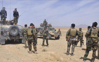 نیروهای امنیتی تلفات سنگین به طالبان در بادغیس وارد کرده است