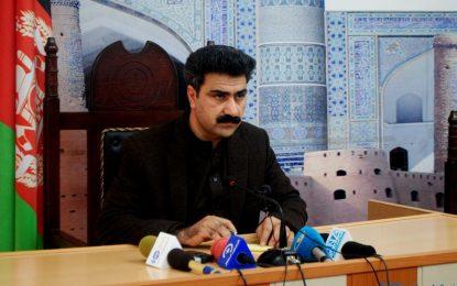 شورای ولایتی هرات از عدم عملیات تهاجمی بر ضد مخالفان مسلح انتقاد میکند