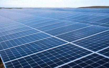 غالب: سکتور خصوصی در بخش انرژی آفتابی و بادی سرمایهگزاری کند