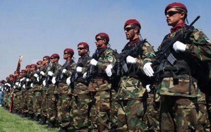 نیروهای امنیتی و دفاعی نماد وحدت ملی در کشور میباشد