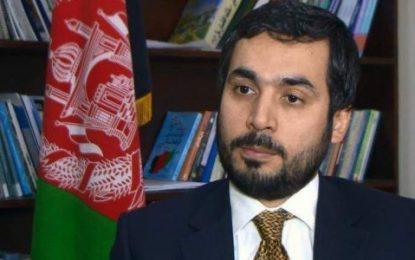 رئیس جمهور: سخنگوی وزارت خارجه را برکنار کرد