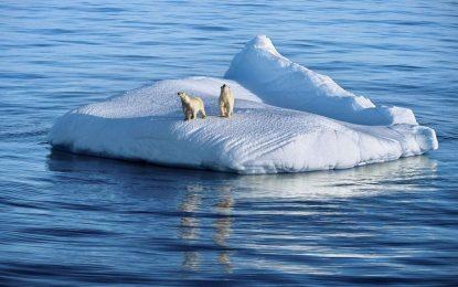 زمین در سال ۲۰۲۰ گرمتر میشود
