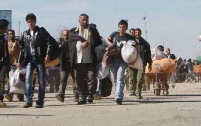در چهار ماه پسین ۳۲۵ هزار پناهجو وارد افغانستان شدهاند