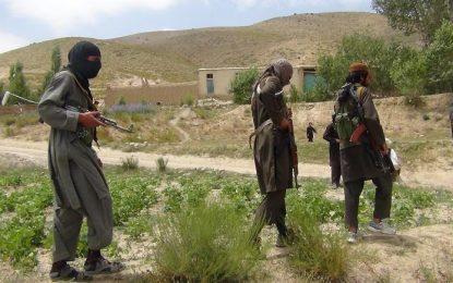 حملات طالبان و «لشکر اسلام» در ننگرهار ۱۳ کشته و زخمی برجا گذاشت
