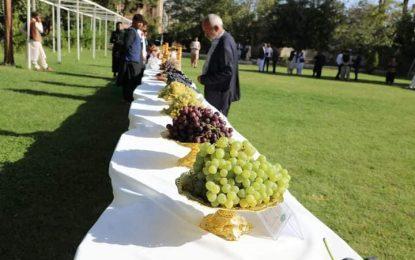 برگزاری پنجمین جشنوارۀ انگور، عسل و انجیر در هرات