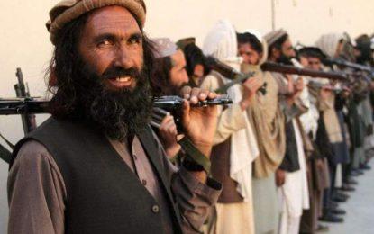 والی پکتیا: طالبان متعهد به صلح نیست